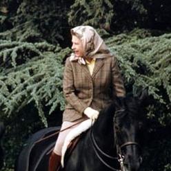 HM headscarf